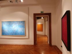 In the matter of color @ Palazzo del Monferrato